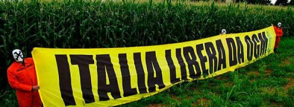 Abbandono dell'OGM