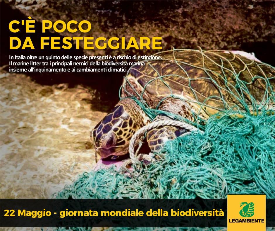 biodiversita 2