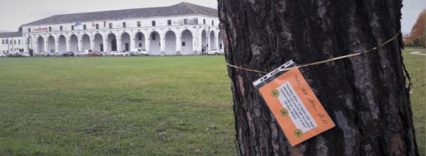 """Rifacimento """"peschiera"""" di via Roma a Limena – alcune considerazioni"""
